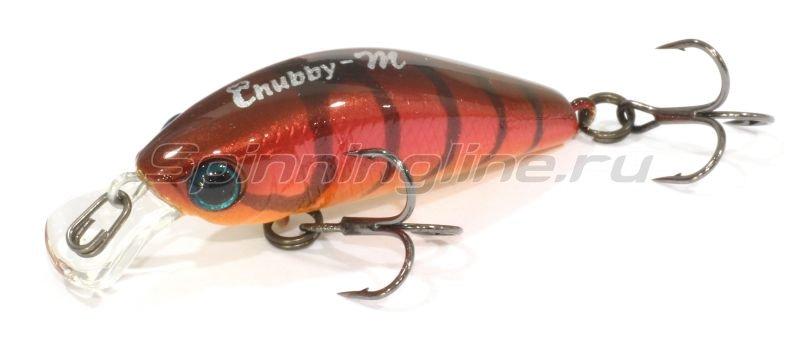 Jackall - Воблер Chubby Minnow 35 craw fish - фотография 1
