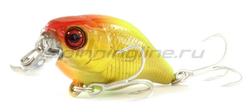 Jackall - Воблер Chubby 38F gold & chart - фотография 1