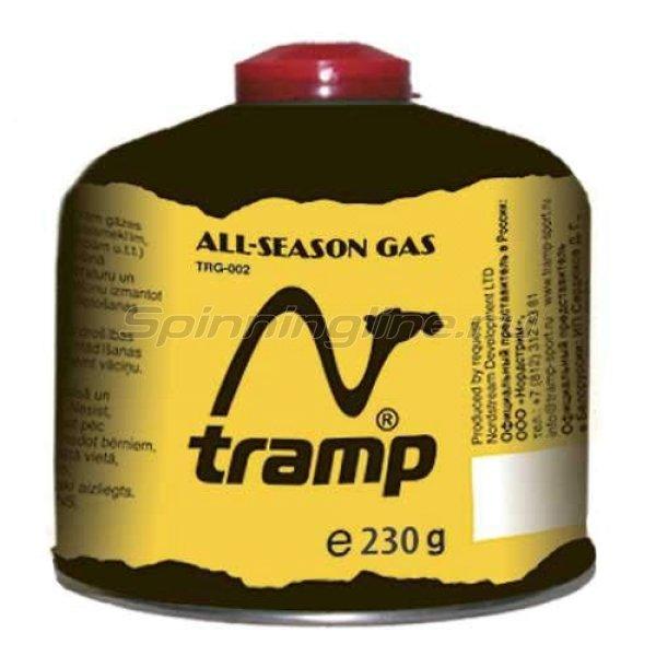 Газовый баллон Tramp резьбового типа TRG-003 230гр -  1