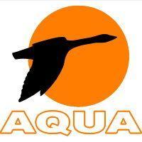 Балансиры Aqua