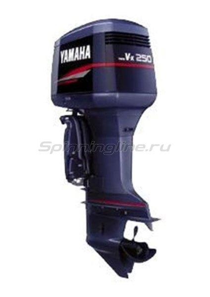 Лодочный мотор Yamaha 250GETOX -  1