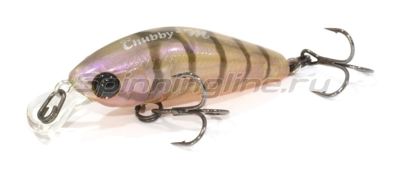Jackall - Воблер Chubby Minnow 35 brown suji shrimp - фотография 1