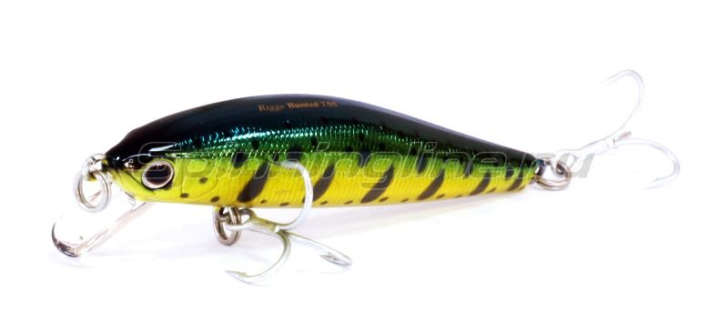 ZipBaits - ������ Rigge Hunted 78S 870 - ���������� 1