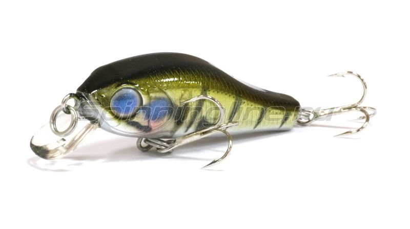 ZipBaits - ������ Rigge 35F 538R - ���������� 1