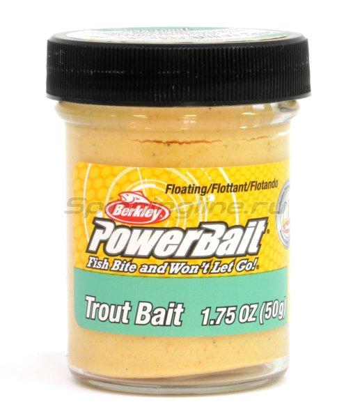 Паста Berkley Biodegradable TroutBait Yellow (смесь рыбных запахов) -  1
