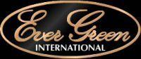 Кастинговые удилища EverGreen International