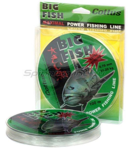 Леска Big Fish 100м 0,70мм -  1