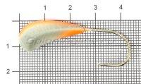 Мормышка Fish Gold судаковая Трехгранка Светлячок кр. Gamakatsu 14гр 10 красный