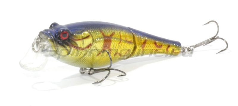 Trout Pro - ������ Rotan Joint 60F HC11 - ���������� 1
