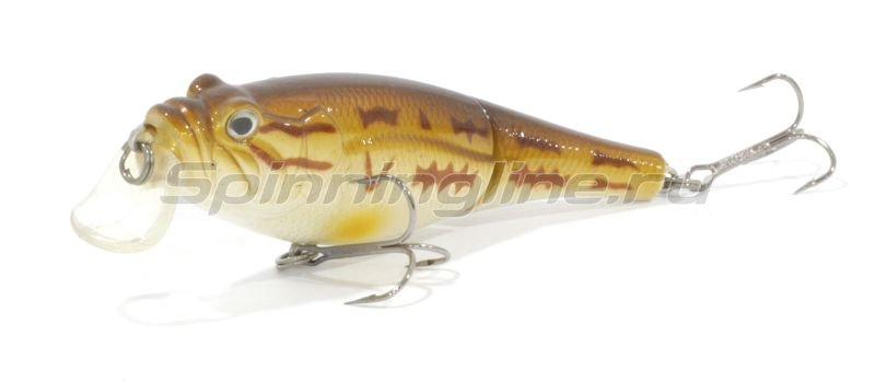 Trout Pro - ������ Rotan Joint 80F S24 - ���������� 1