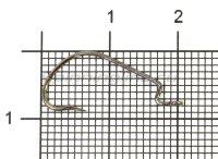 Крючок Saikyo BS-2312BN №6
