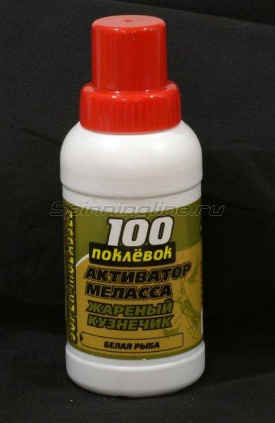 Активатор 100 поклевок Меласса Жареный кузнечик 250мл - фотография 1