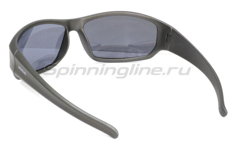 Очки Nautilus N7201 PL grey - фотография 2