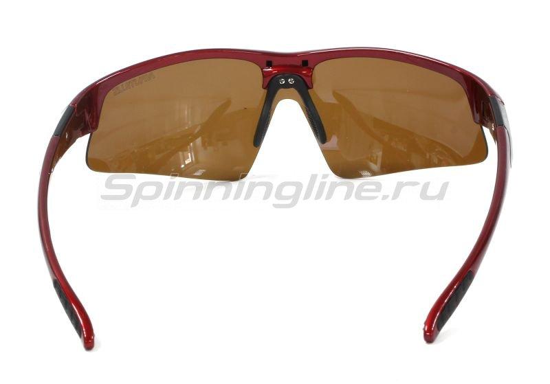 Очки Nautilus Vettore N7502 PL brown -  4
