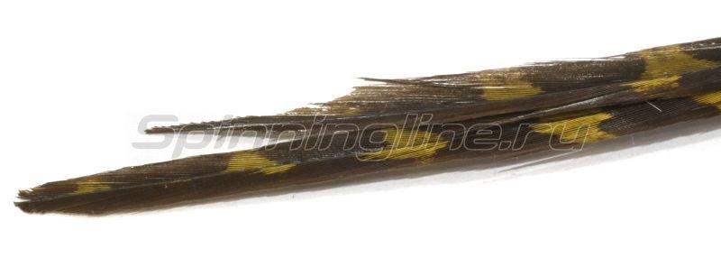 Super Fly - Перья Ringneck Pheasant Centre Tail-Olive RPTD-08 - фотография 1