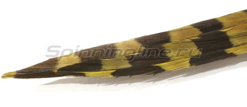 Перья Ringneck Pheasant Centre Tail-Yellow RPTD-02 -  1
