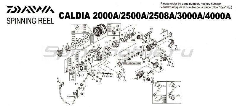 Катушка Caldia 2000 A -  8