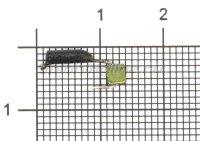 Мормышка Гвоздекубик d1.5 зеленый кр.kumho