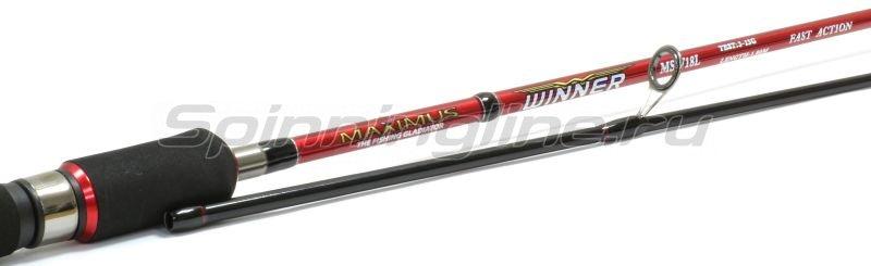 Maximus - Спиннинг Winner 24L - фотография 3