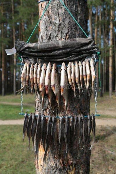 """""""А я дикарем"""" - Сушилка для рыбы Штырь-2 - фотография 8"""