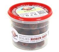 Бойлы Big Fish Expert тонущие Boiles Robin Red 16мм 250гр