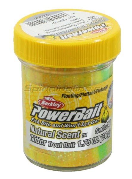Паста Berkley PowerBait Natural Scent Salmon Rainbow Garlic -  1