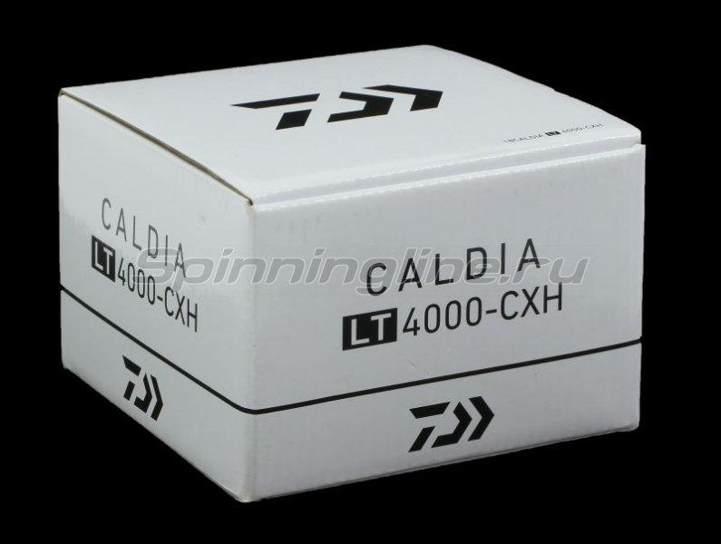 Катушка Daiwa Caldia 18 LT 2500D -  7