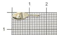 Мормышка Рыболов-Олта Уплощенная овсинка со скосом с отверстием d4.5 серебро