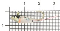 Джиг Liman Fish Малек J8 1.5/2.0гр