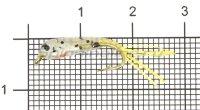 Малек силиконовый Liman Fish KH №10 желтый