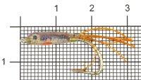 Малек силиконовый Liman Fish KH №2 коричневый