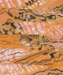 Пленка для блесен Field Hunter Shell Sheet-MM-04 - фотография 1