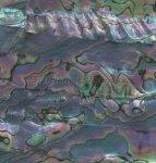 Пленка для блесен Field Hunter Shell Sheet-MM-05 - фотография 1
