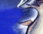 """Мир футболок - Футболка с рисунком """"Щука малек"""" S синий - фотография 4"""